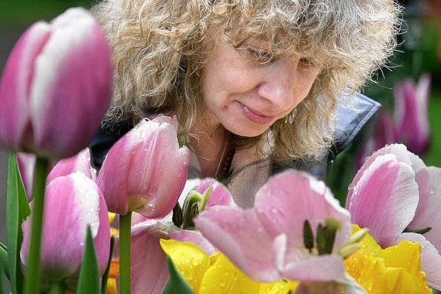Tulpenfest im Stadtpark