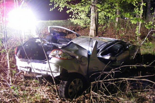 Autofahrer stirbt wegen Wildschwein-Unfall