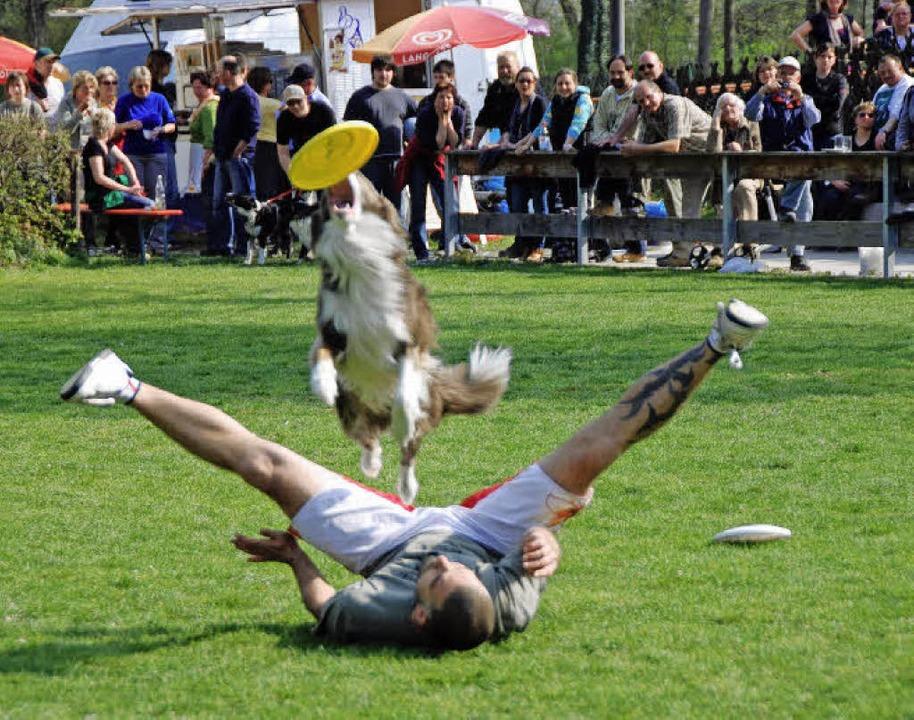 Ein echter Hingucker war die Hundeshow... Frisbee-Wurfscheibe undd Vierbeiner.     Foto: Roland Vitt