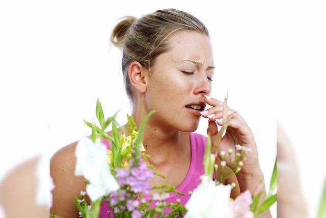 Unfallrisiko durch Pollen