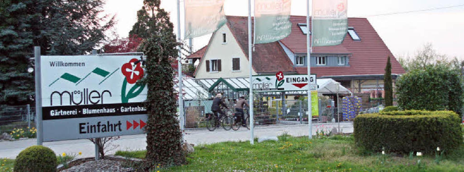 Die Gärtnerei Müller in Schallstadt wi...etrieb erweitern und umstrukturieren.   | Foto: Silvia FalleR /Siegfried Gollrad