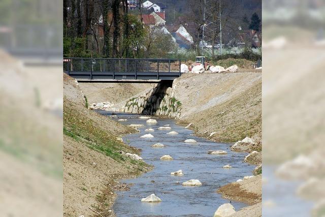 Kanal entlastet Hodbach