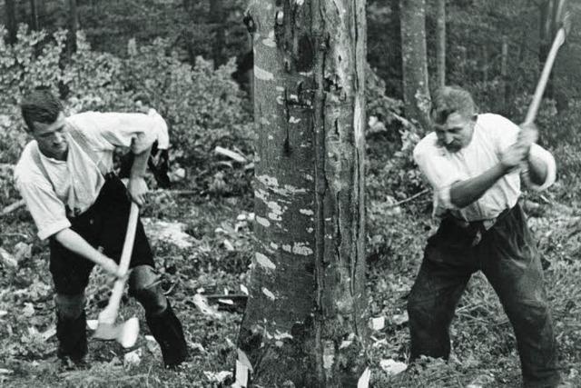 175 Jahre Forstamt Freiburg: Der Wald als Psychotop