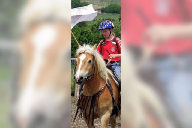 Spielerischer Wettbewerb für junge Reiter