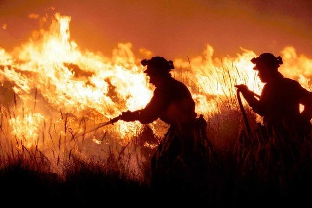 Förster warnt vor Waldbrandgefahr