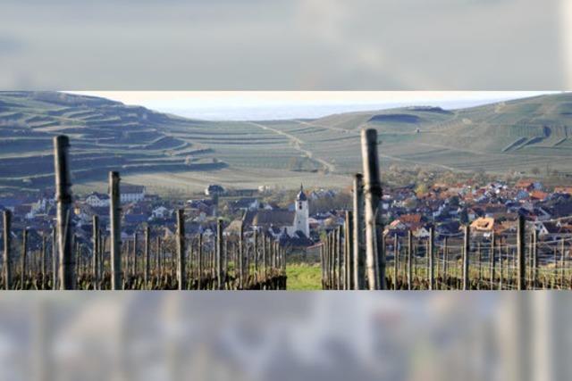 Jechtingen läutet die Weinfestsaison ein