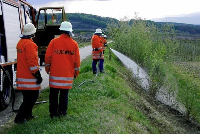 Feuerwehr löscht Böschungsbrand