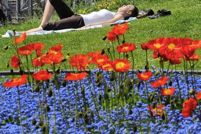 Mythos Frühlingsgefühle - was ist dran?