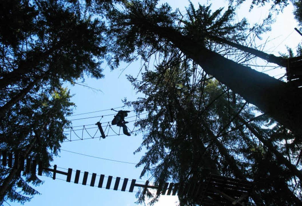 Gut sichern – und bloß nichtrunterschauen! Oder doch?  | Foto: Fotos: Martina Seiler/PR action forest(2)