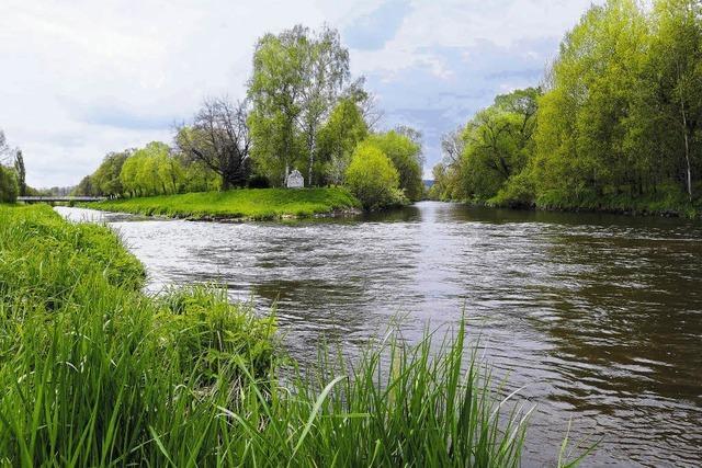Ein Wahrzeichen am Beginn der Donau?