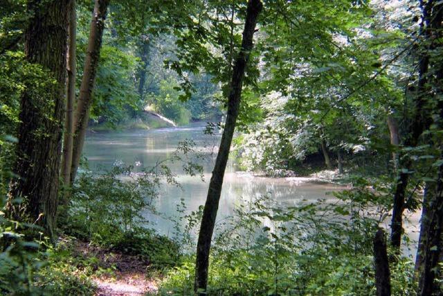Geo-Tag der Artenvielfalt: Pflanzen und Tierarten auf der Spur