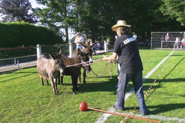 Fußballer und Esel im Glück