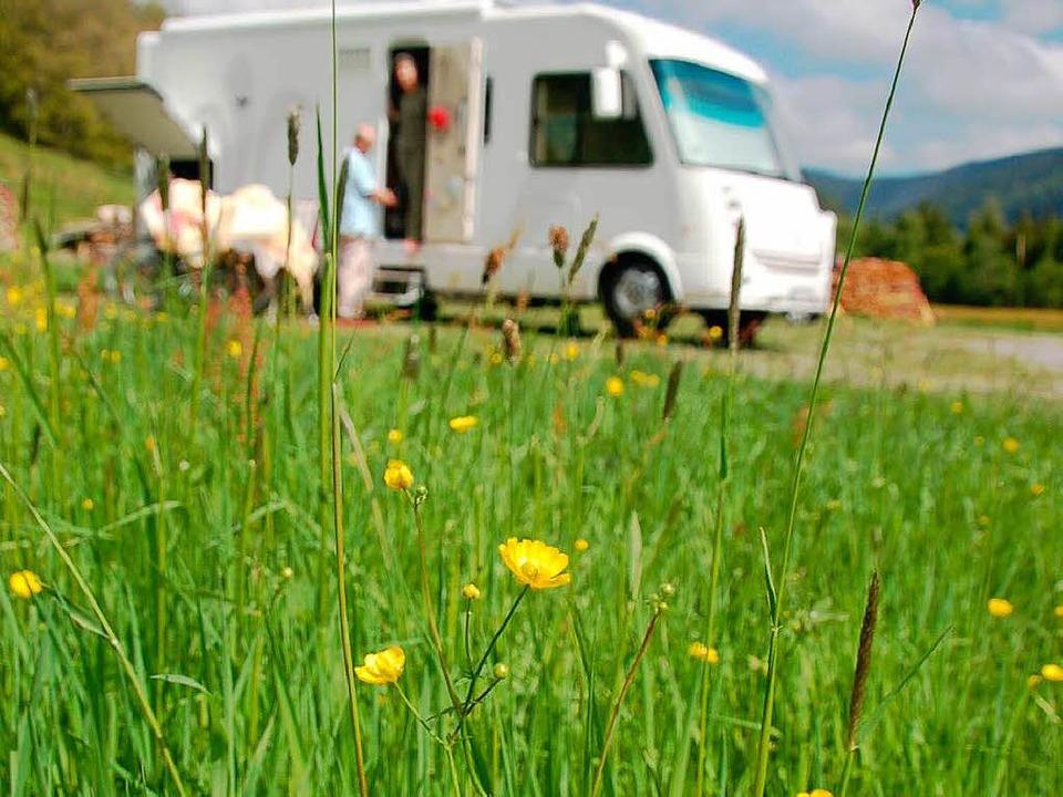 Am Menzenschwander Rehbach gibt es bereit Wohnmobil-Stellplätze  | Foto: Kathrin Blum