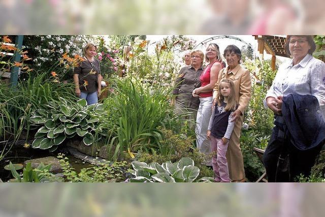 Das Gartentor steht offen