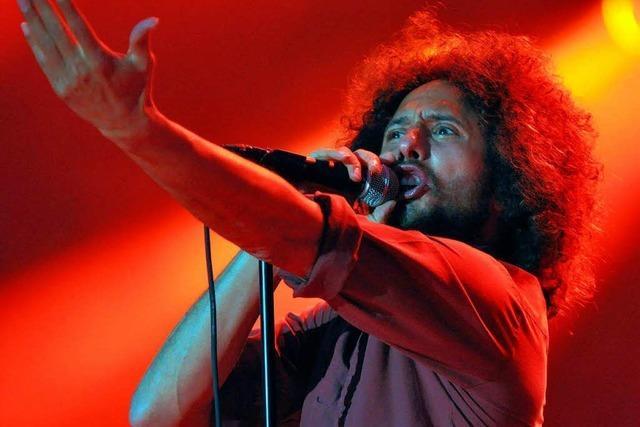 Rock-Festivals: Ungezügelte Kraft, zeitlos mitreißend