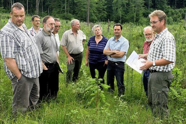 Jagd und Forst einigen sich