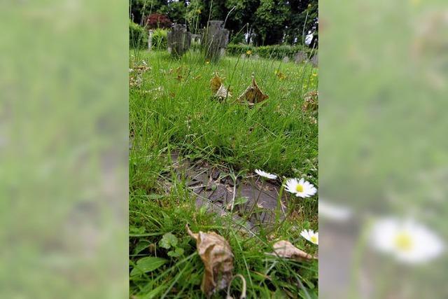 Unruhe auf dem Friedhof