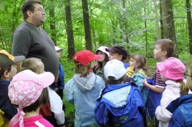 Kinder betreten im Wald Neuland