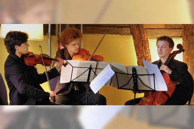 Kammermusik mit Vogelgezwitscher