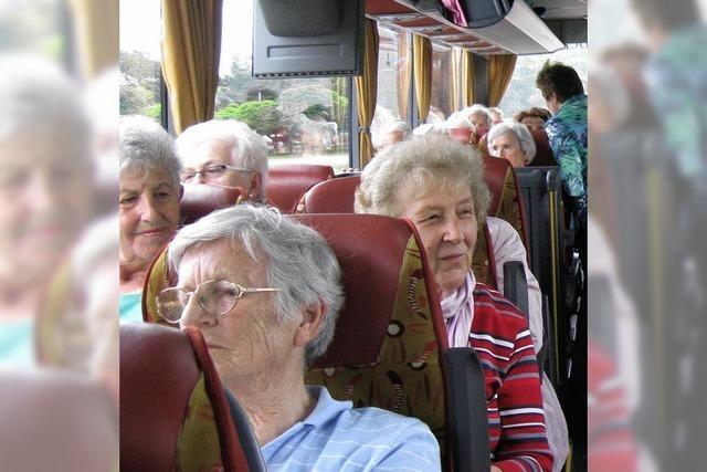 Senioren besuchen den Flückigersee