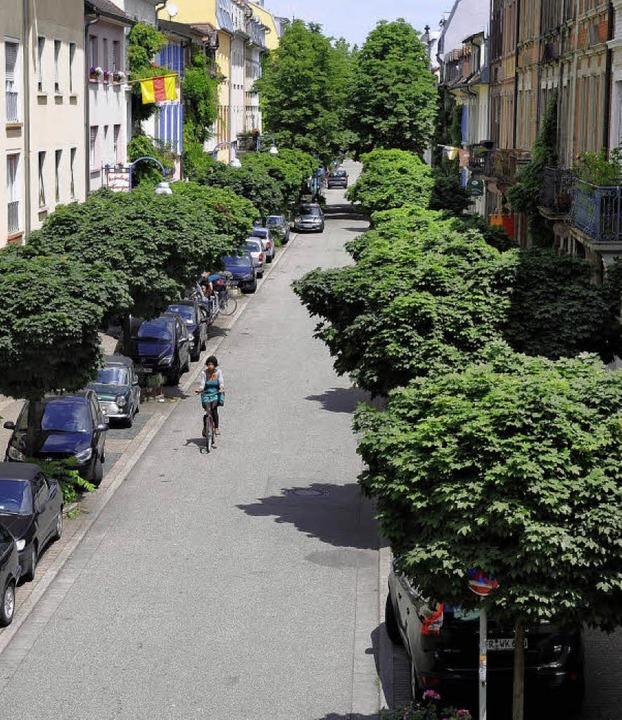 Viele Bäume wurden in den vergangenen ...' Idee, 10000 Bäume zu pflanzen.  | Foto: ingo schneider