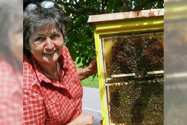 Lehrfahrt zu den Adelsberger Bienen und Kräutern