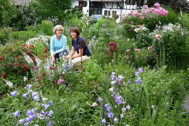 Gartenwettbewerb: Romantik in einem harmonischen Naturpark