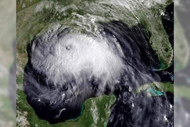 Wehe, der Hurrikan kommt