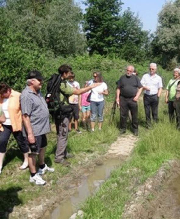 Der Biologe Carsten Brinckmeier erläut...getation und die Tierwelt im Neufeld.     Foto: privat
