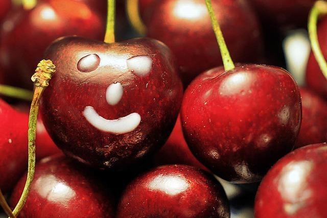 Neu auch gedörrte Früchte