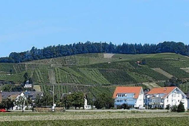 Am Wochenende ist Weinfest in Buchholz