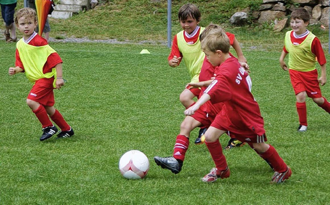"""Bambinis (""""Pampersliga""""):   FC Birkendorf und  SG Schlüchttal.     Foto: Denz"""