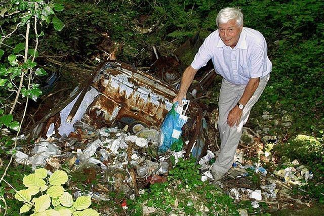 Autowracks und Müll im Buchswald
