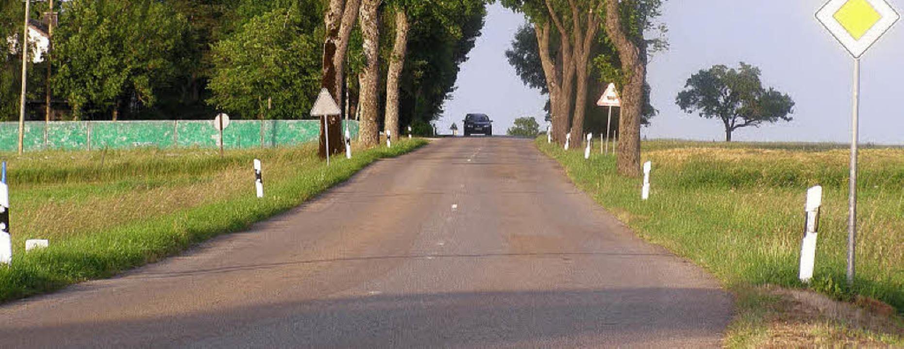 Hier soll kein Radweg die Straße quere... des Landratsamts nicht für sinnvoll.   | Foto: Liane Schilling