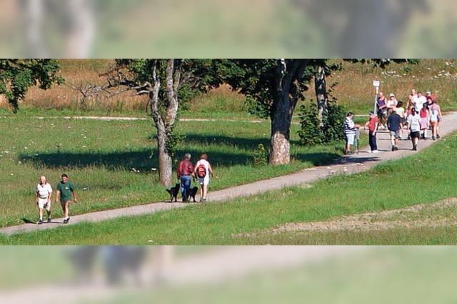 Wandertage Göschweiler - Kinderwagen sind willkommen