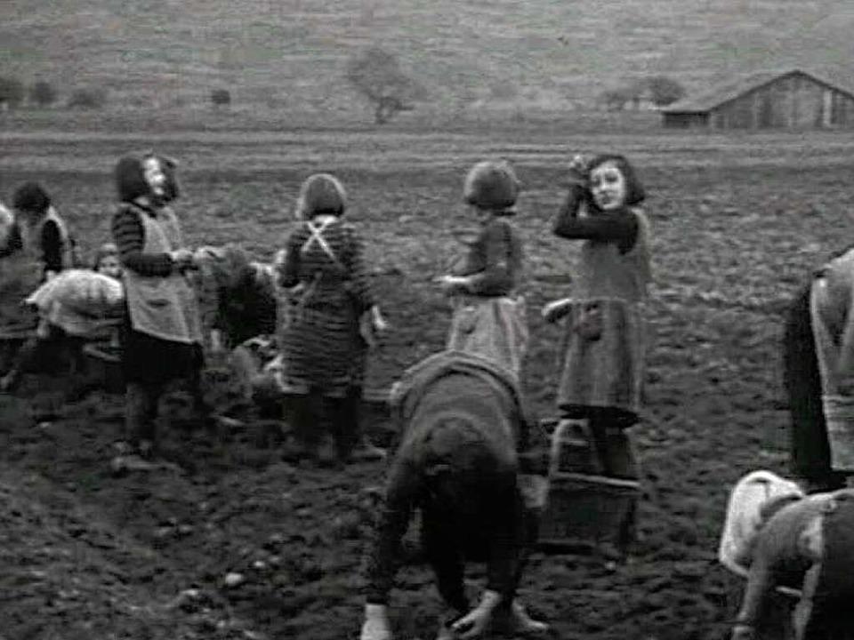 Szenen aus den alten Lahrer Filmen.    Foto: Jörg Reitmayer