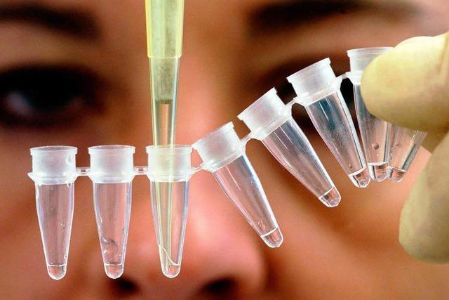 Überführt ein DNA-Test den Mörder von Maria Bögerl?