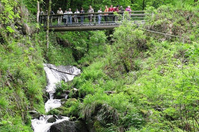 BZ-Ausflugstipp: Stampfbachwasserfall und Scharfenstein