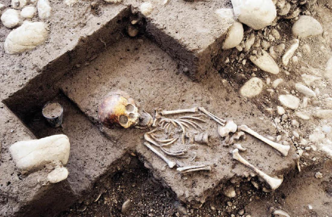Als Grabbeigabe liegt am Kopfende dies...skeletts ein unversehrter Glasbecher.   | Foto: Archäologische Bodenforschung Basel-Stadt