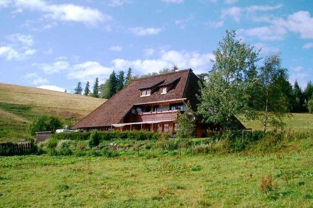 Auf Hinterwaldkopfhütte die Stille der Almweiden genießen