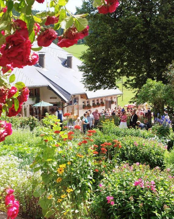 Die herrliche Farbenpracht lockte zahl... den Bauerngarten des Steinbachhofes.   | Foto: Andrea Schwär