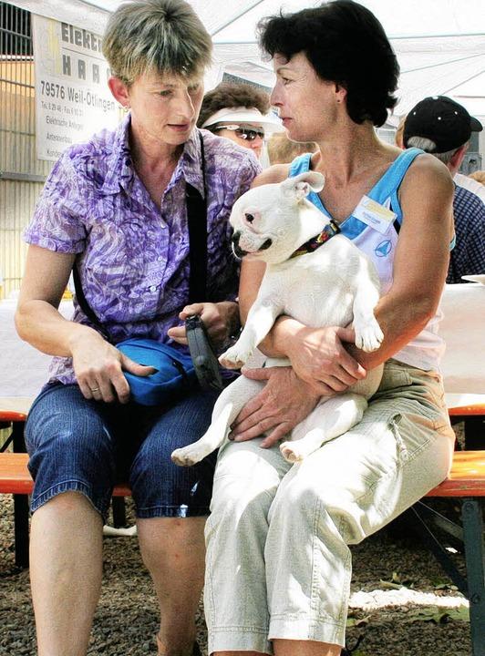 """Tierheimleiterin Martina Donath (recht..."""" im Gespräch mit Susanne Ludin     Foto: Cremer"""
