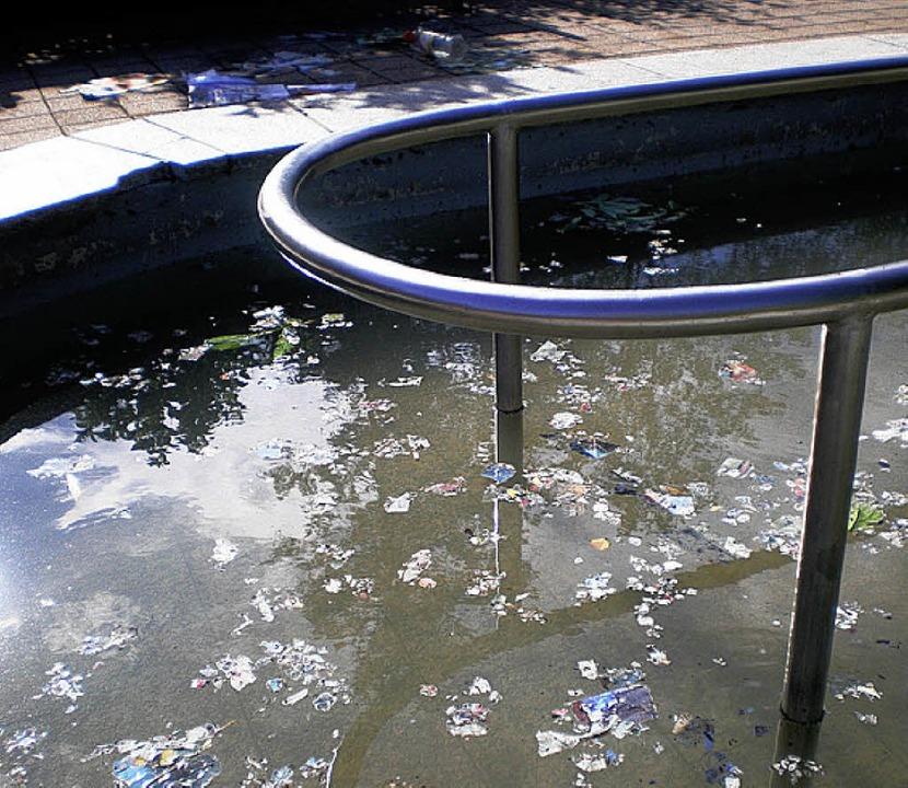 Sauerei: Schon wieder verwüsteten Unbekannte das Kneipp-Becken in der Stadt.   | Foto: privat