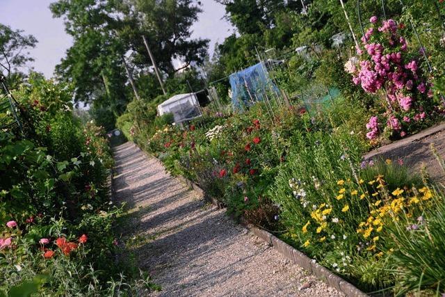 Aus Kleingärten werden Grünanlagen
