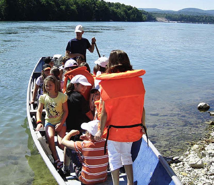 Die Klasse 3 b der Goetheschule erkundete vom Boot aus die Rheinfische.   | Foto: Privat
