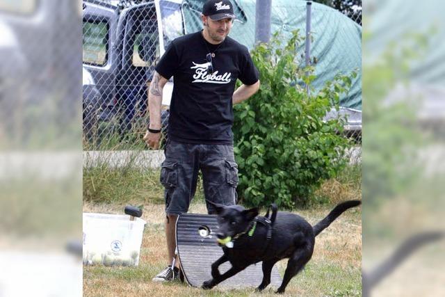 Auch Hunde kommen ins Flegelalter