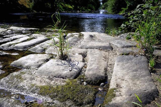 Wasserentnahme: Dreisam und Bäche sind tabu
