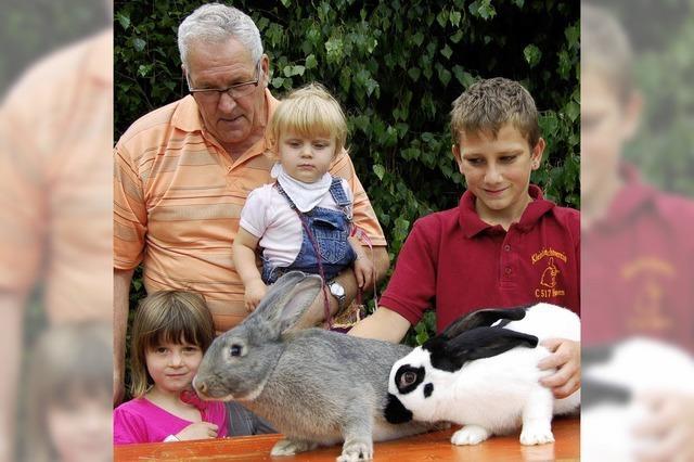 Dreimal die Bestnote für rassige Kaninchen