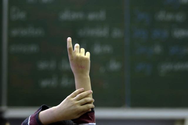 Wer steht hinter den Schulen für Migrantenkinder?