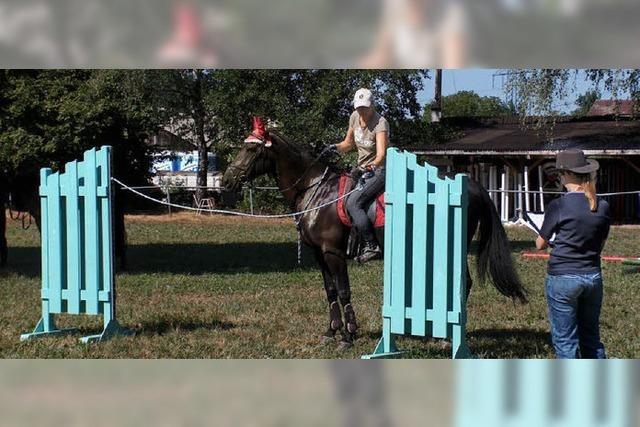 Spaß und Spannung hoch zu Pferde